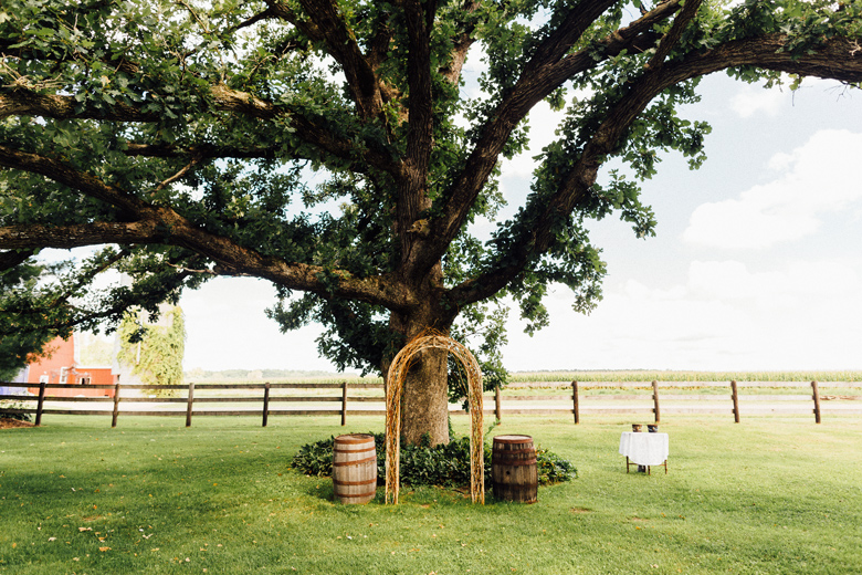 sugarland wedding tree