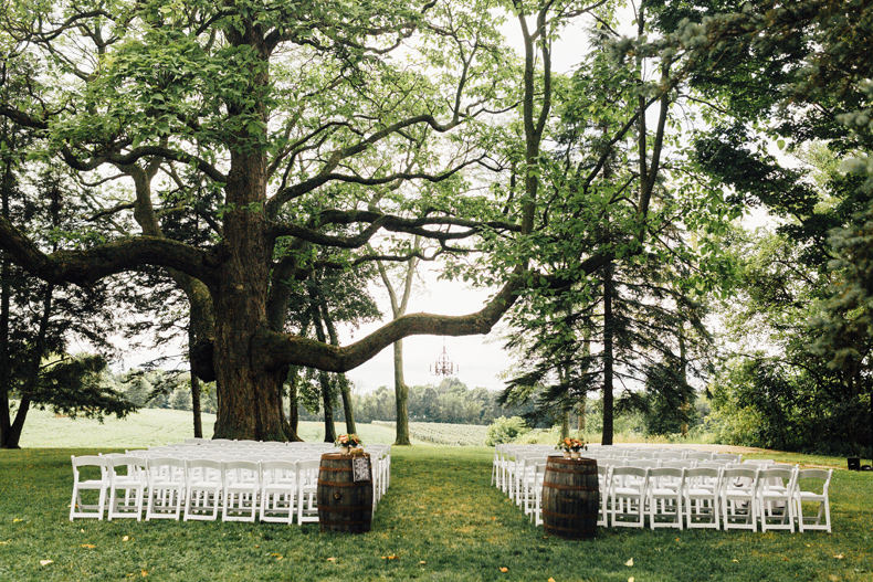 hidden vineyard wedding ceremony